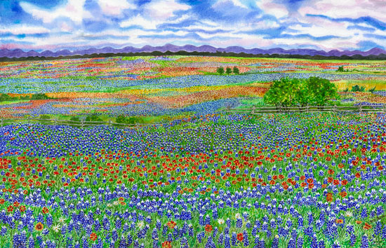 Margaret Thorn Watercolor Artist Texas Wildflowers